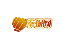 拳保保险网网站建设
