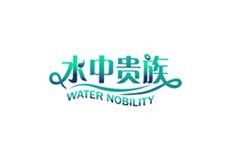 水中贵族网站建设