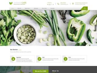 英文生鲜网站设计
