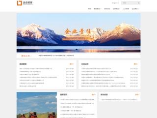 企业管理网站模板