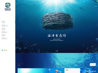 展览展会网站模板